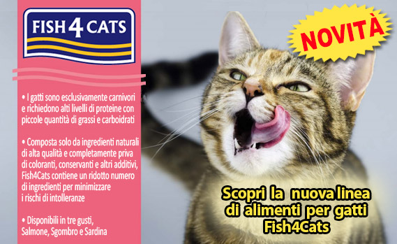 crocchette-fish4-cats-in-offerta